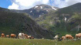 Pirineos Orientales desde Barcelona. Sintiendo las montañas